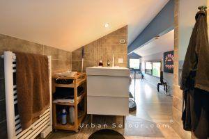 ecully-location-la-grande-villa-en-bois-mezzanine-sdb-b