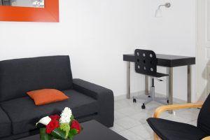 lyon-3-location-bellecombe-plaza-sejour-1c