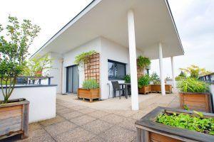 lyon-3-location-la-terrasse-de-montchat-terrasse-d
