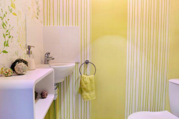 lyon-9-location-valmy-tuileries-cabinet-toilettes