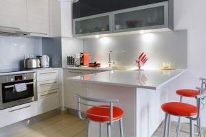 lyon-3-location-sans-souci-parc-sisley-cuisine-c